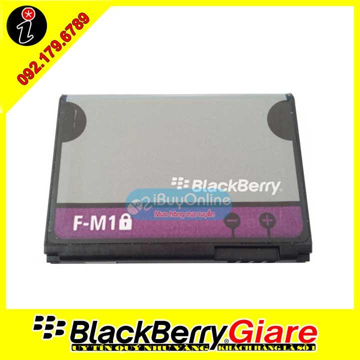Pin BlackBerry F-M1 Battery (BlackBerry 9100/9105/9670)